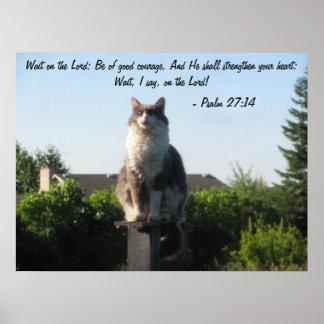 Gato Eyed cruz e 27:14 do salmo Posters