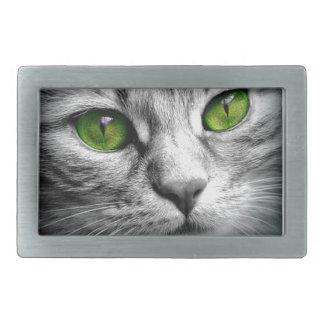 gato eyed verde
