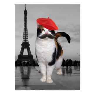 Gato francês em Paris Cartão Postal