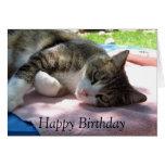Gato grande do menino no cartão de aniversário da