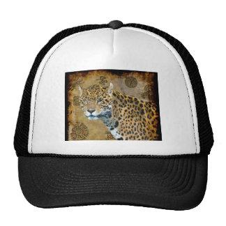Gato grande manchado dos animais selvagens astecas bonés