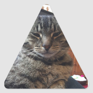 Gato listrado adesivo triangular