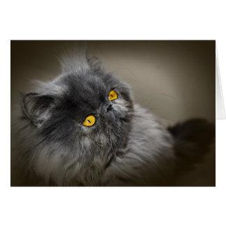 Gato macio preto com cumprimento vazio dos olhos cartão comemorativo