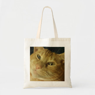 Gato malhado bonito que relaxa ..... bolsas de lona