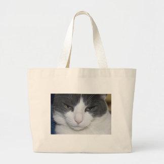 gato na praia bolsa para compras