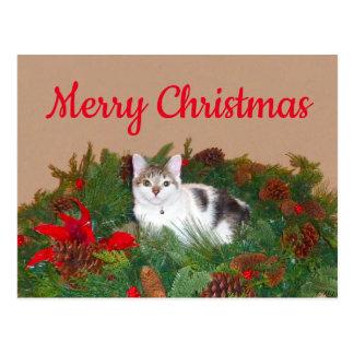Gato no cartão de Natal da grinalda