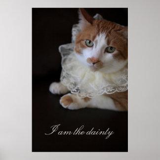 Gato no colar laçado pôster