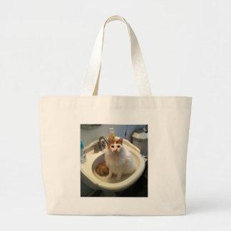Gato no dissipador