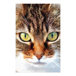 Gato Papelaria