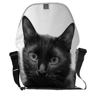 Gato preto bolsa mensageiro