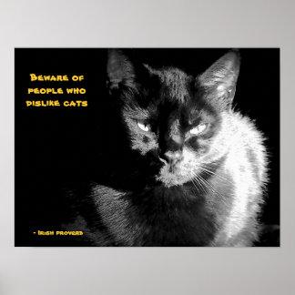 Gato preto brilhante com provérbio poster