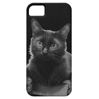 Gato preto capa barely there para iPhone 5