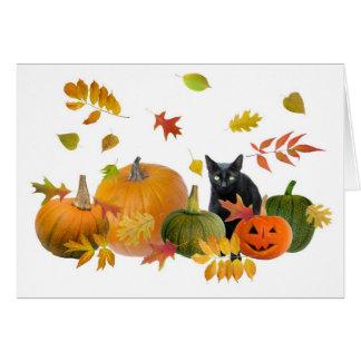 Gato preto com abóboras cartão comemorativo