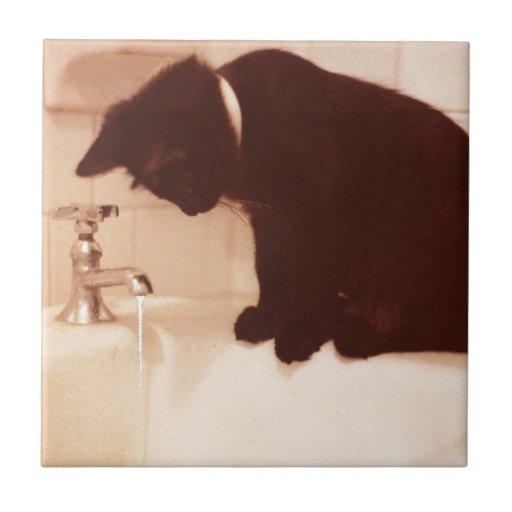 Gato preto da pimenta do banheiro azulejos de cerâmica