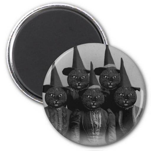 Gato preto do vintage/bruxas imãs de geladeira
