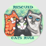 Gato salvado/abrigo adesivo em formato redondo