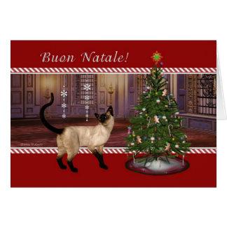Gato Siamese - cartão de Natal italiano de Buon