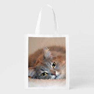 Gato Sacola Ecológica