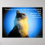 Gatos adorados como deuses com citações anónimas poster