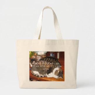 gatos bolsa para compra