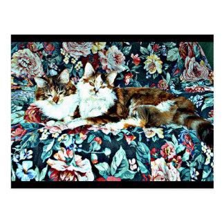 Gatos de chita na arte animal do cartão | da
