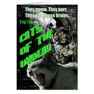Gatos do cartão do Dia das Bruxas do vivo