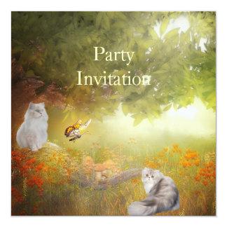 Gatos do convite nas madeiras