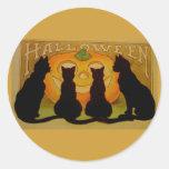 Gatos do Dia das Bruxas do vintage e Jack Adesivo Redondo