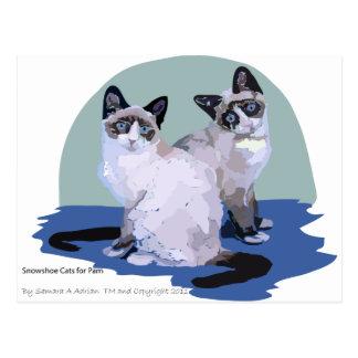 Gatos do sapato de neve cartão postal