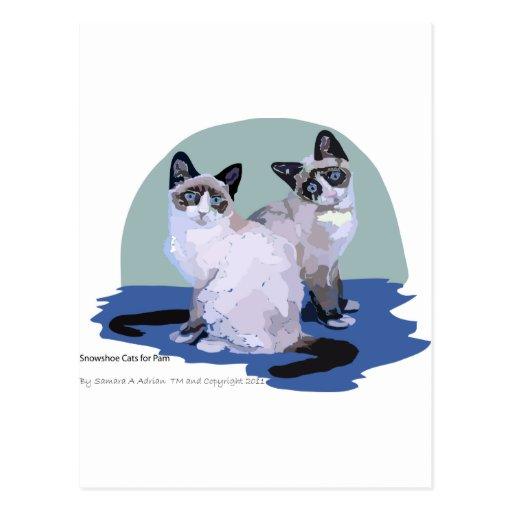 Gatos do sapato de neve cartao postal