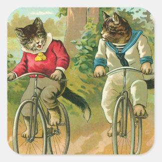 Gatos do vintage na bicicleta adesivo quadrado