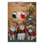 Gatos/gatinhos engraçados Feliz Navidad Cartão Comemorativo