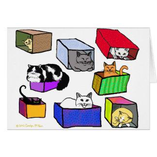 Gatos no cartão das caixas