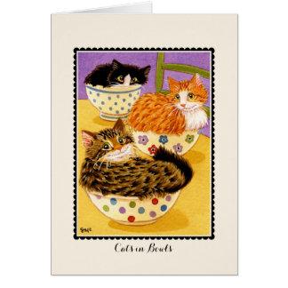 Gatos no  do cartão de cumprimentos das bacias