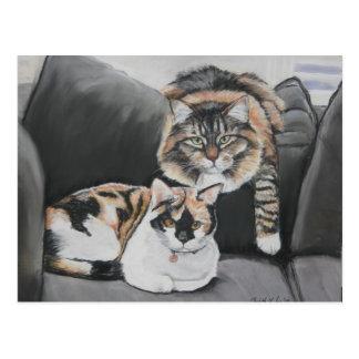 Gatos que penduram para fora o cartão da arte