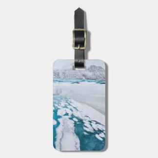 Gelo congelado da geleira, Islândia Etiqueta De Bagagem