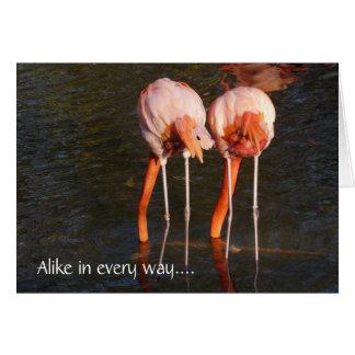 Gêmeos do feliz aniversario! - Flamingos cor-de-ro Cartão