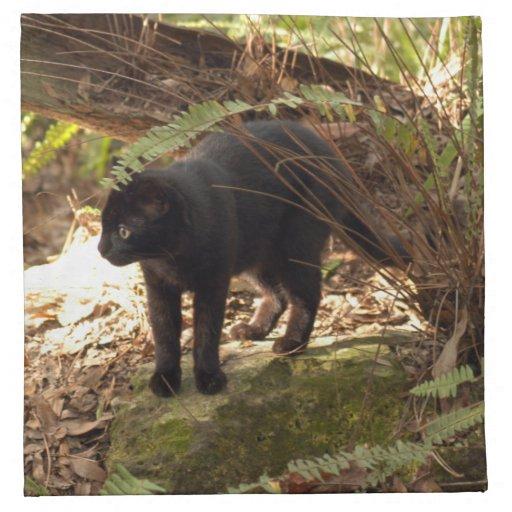 geoffroy-cat-005 guardanapos de pano