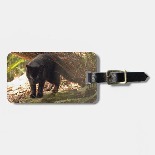 geoffroy-cat-006 etiqueta de mala de viagem