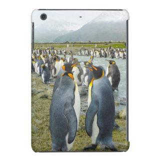 Geórgia sul. Saint Andrews. Pinguim de rei 6 Capa Para iPad Mini Retina