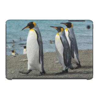 Geórgia sul. Saint Andrews. Pinguins de rei 9 Capa Para iPad Mini Retina
