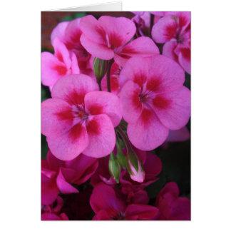 Gerânio cor-de-rosa 2 do Peppermint Cartão Comemorativo