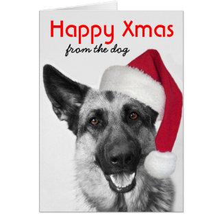 German shepherd do cartão de Natal