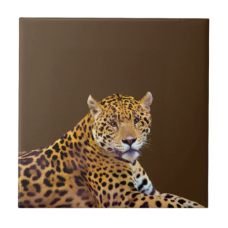#Gift grande manchado do Gato-amante de Jaguar Azulejo Quadrado Pequeno