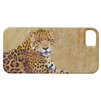 #Gift grande manchado do Gato-amante de Jaguar Capa Barely There Para iPhone 5