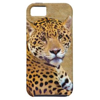 #Gift grande manchado do Gato-amante de Jaguar Capas Para iPhone 5