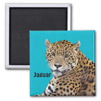 #Gift grande manchado do Gato-amante de Jaguar Ímã Quadrado