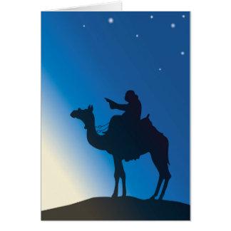 Ginete de camelo mostra no luzir