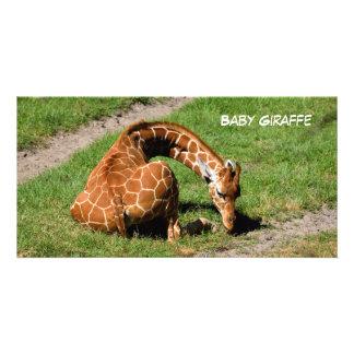 Girafa do bebê na reserva dos animais selvagens cartão com foto