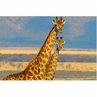 Girafa Fotoesculturas